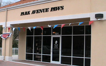 park avenue paws commerical construction